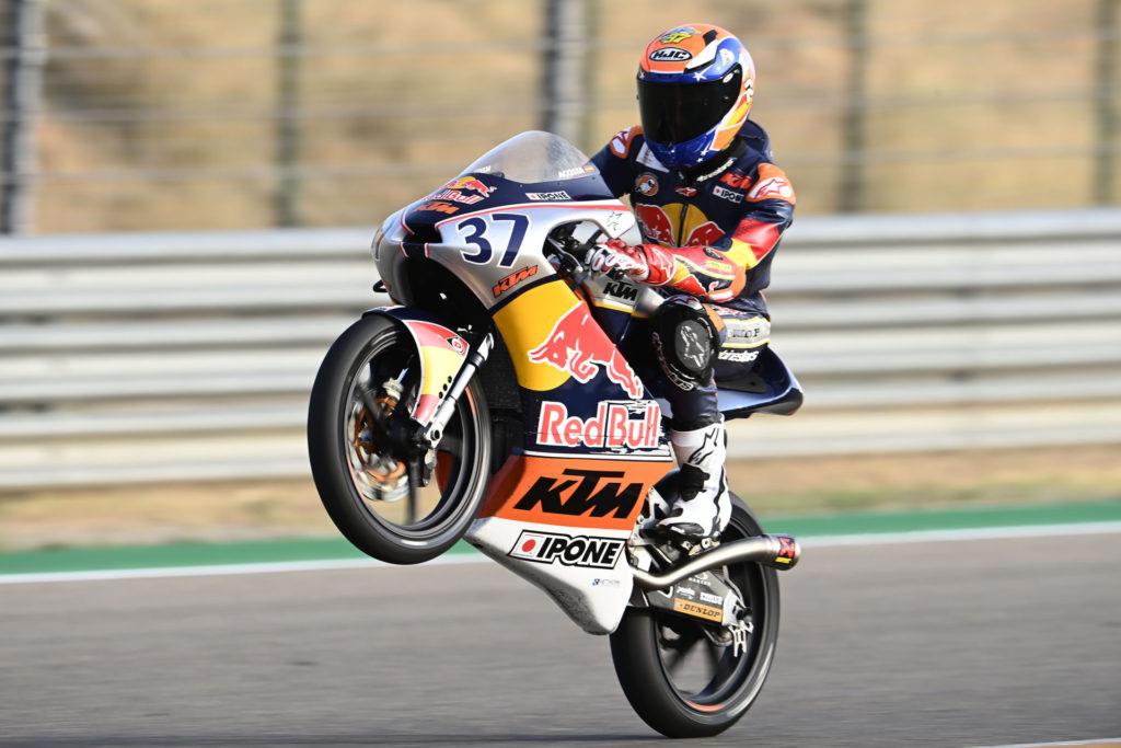 Pedro Acosta (37). Photo courtesy Red Bull.
